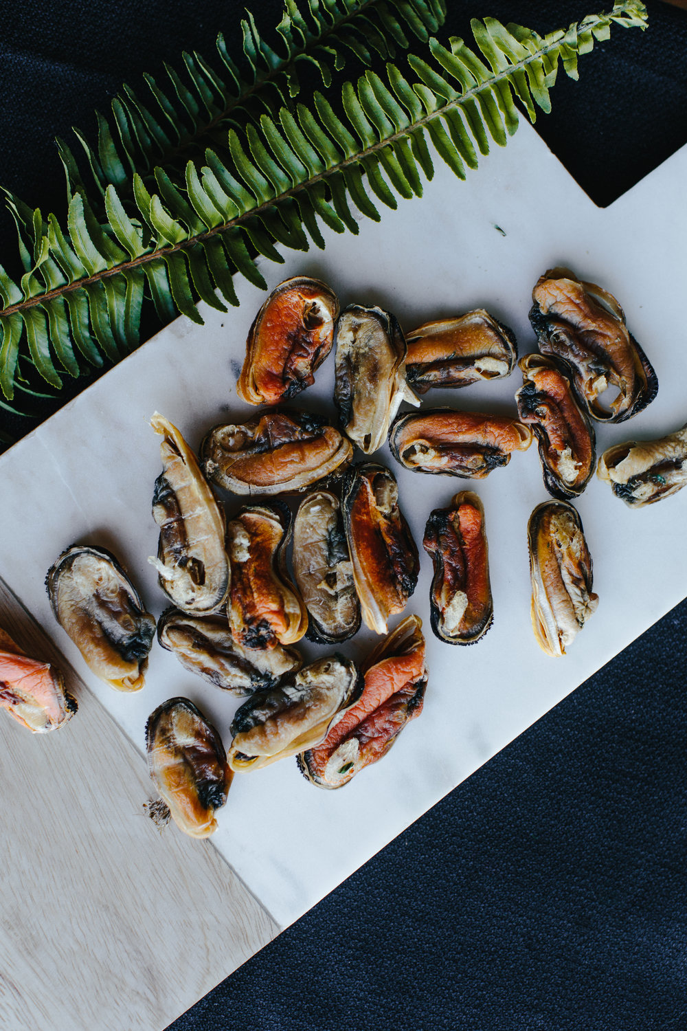 All About Green Lipped Mussels  - A powerhouse of joint health, these tiny treats pack a powerful punch!