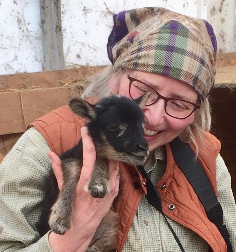 Margaret and Harris the ram lamb