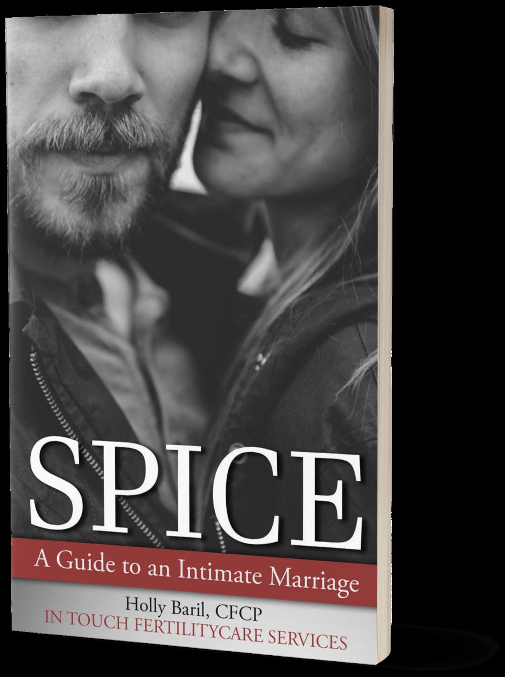 spice-ebook-mockup.png
