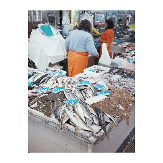 Morning at the fish market, Mercado do Livramento, Sétubal