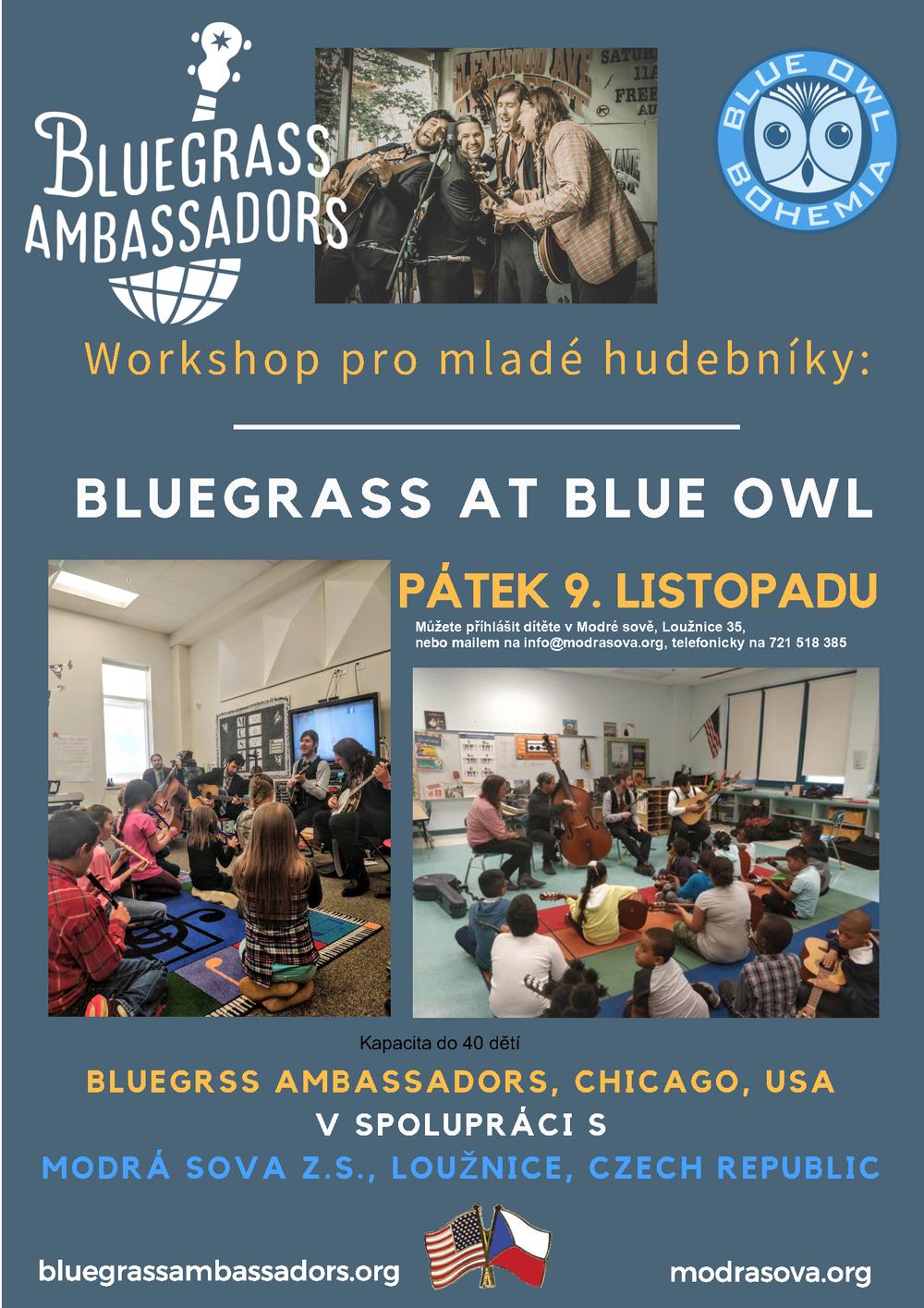 Bluegrass at Blue Owl.png