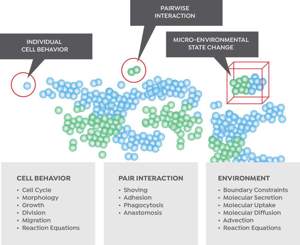 bio_cell-pair-enviro.png