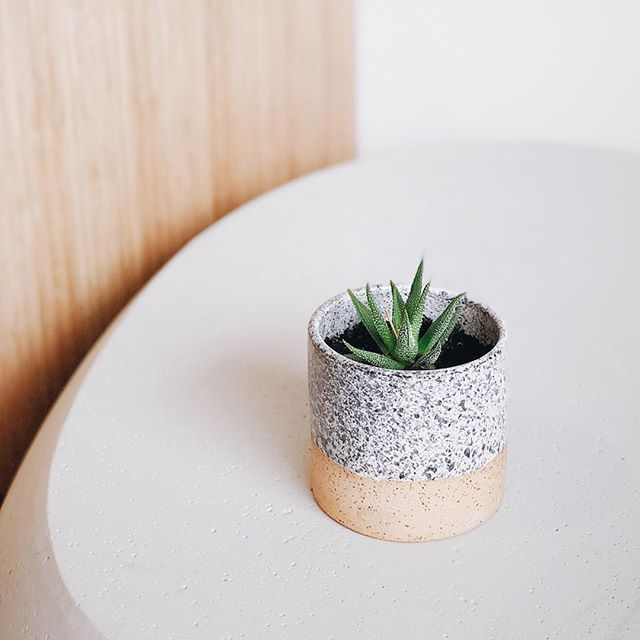 One of my older pieces that sits happily on my desk, bringing a little nature to my side 🌵. This was one of the first things I threw that I was happy with - it's a speckled buff piece with black underglaze sprayed over a glossy white glaze. Enjoy! . . . #ceramics #handmade #clay #art #ceramic #stoneware #design #wheelthrown #porcelain #love #homedecor #ceramica #potter #etsy #interiordesign #glaze #decor #artist #vintage #vase #craft #instapottery #flowers #keramik #ceramicart #pot #mug #bowl #mugs #earthenware