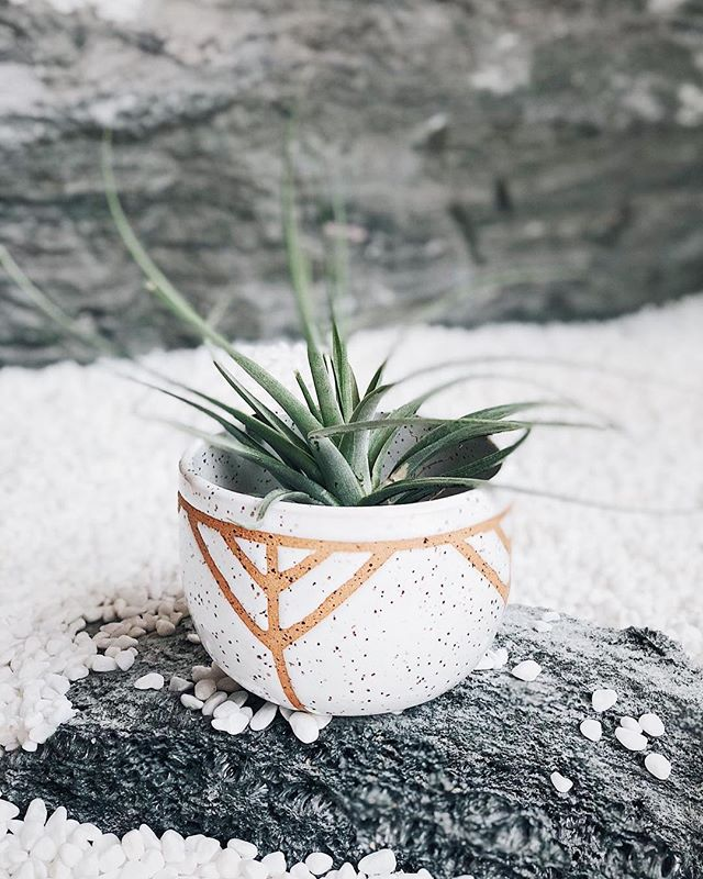 Tiny chevron planter I made in a set of three planters I made for a friends succulents at home. I usually make this pattern on huge planters but it came out really nice in this size too =) 👌⠀ .⠀ .⠀ .⠀ #ceramics #handmade #clay #art #ceramic #stoneware #design #wheelthrown #porcelain #love #homedecor #ceramica #potter #etsy #interiordesign #glaze #decor #artist #vintage #vase #craft #instapottery #flowers #keramik #ceramicart #pot #mug #bowl #mugs #earthenware