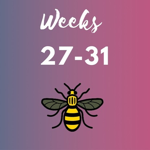 What's on over July in the business world of Manchester? 🐝 Find out more in our blog round-up. 🐝 Our featured event is tomorrow @Babbo Restaurant in Prestwich Supporting the @the22beesproject 🐝 ✍🏻Link in bio . . . . . . . . . #july #week27 #manchester #business #networking #events #northern  #connections #featured  #SMES #connections #businessdevelopment #businessgrowth #womensnetworking #womeninbusiness #22beesproject