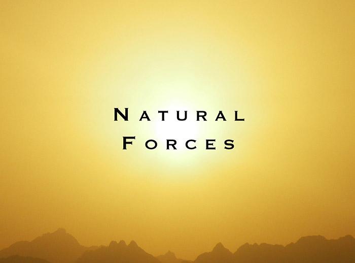 nat_forces.jpg