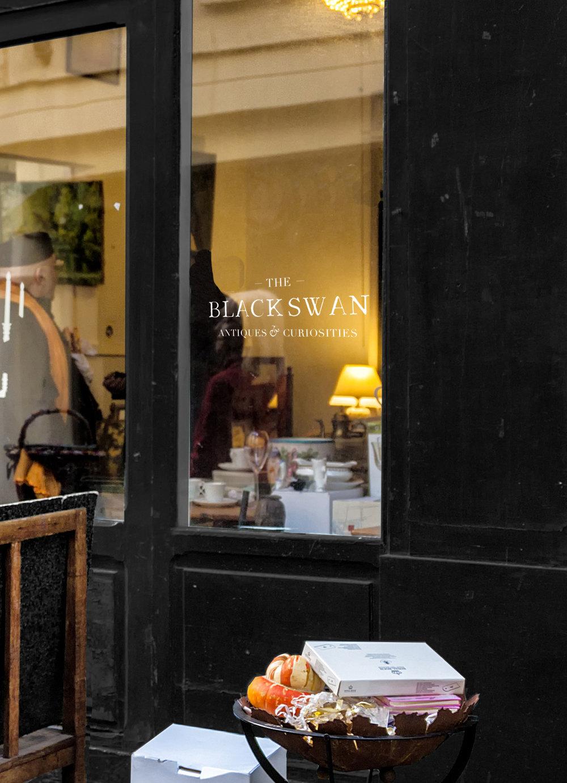 Black_Swan_Store1.jpg