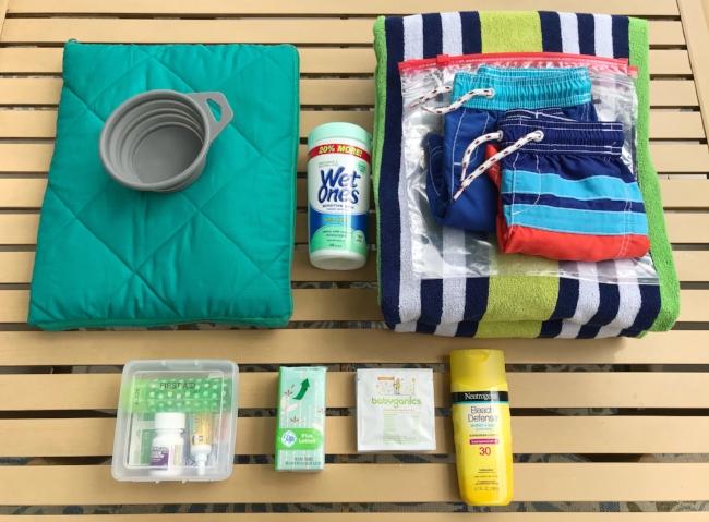 The Joyful Sort - Professional Organizer - Columbus, Ohio - Blog - How To Organize A Summer Car Kit