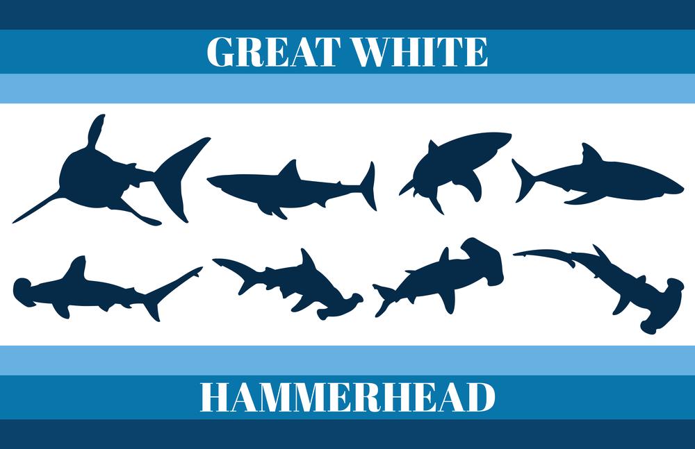 Great White & Hammerhead Shark Silhouettes