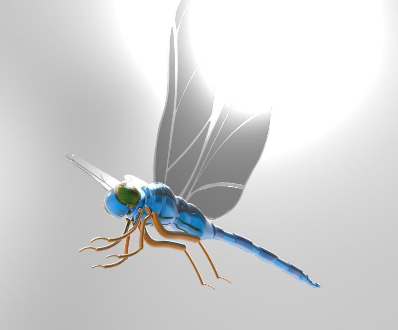 Dragonfly Rendering