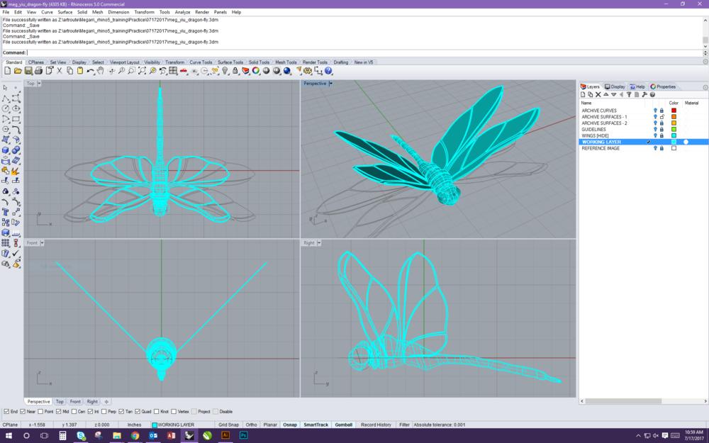 Dragonfly Wireframes