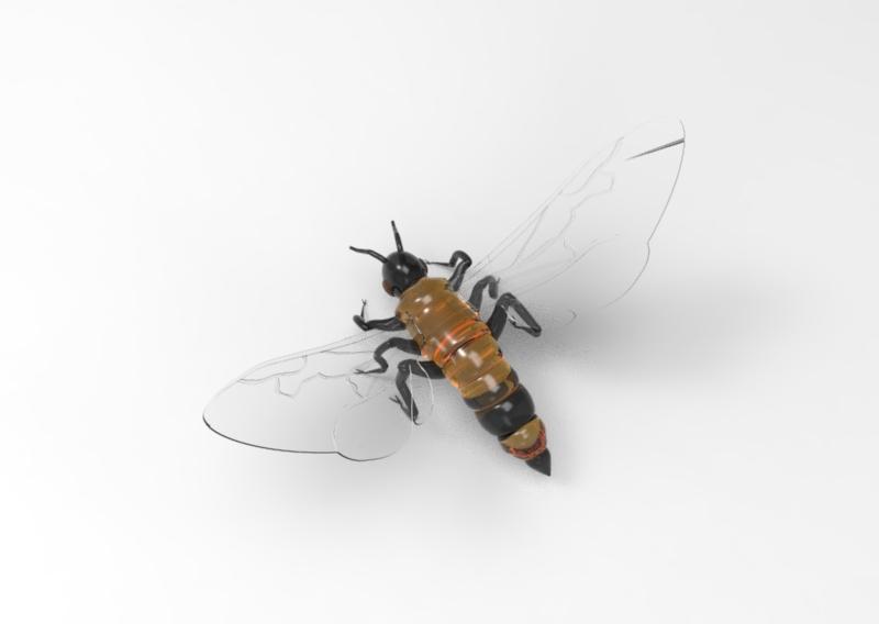 Queen Bee - Top View