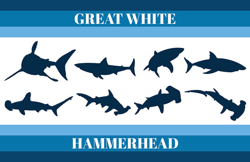 Great White & Hammerhead Silhouettes