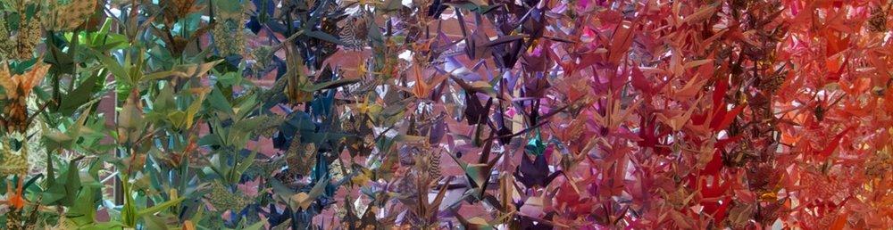 Cranes11.jpg