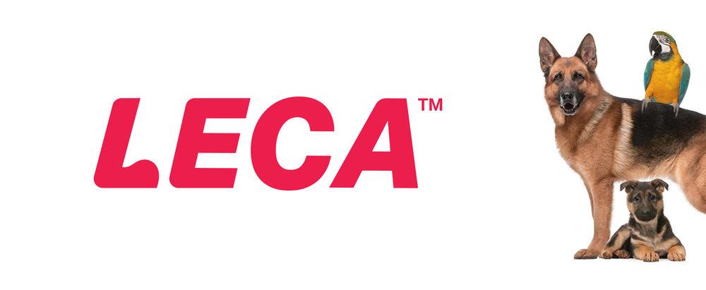 dog-academy-logo-brand-identity-white.jpg