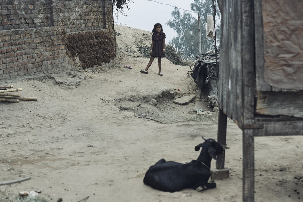 India0314.jpg