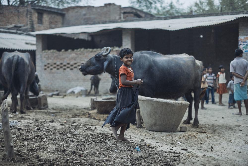 India1521.jpg