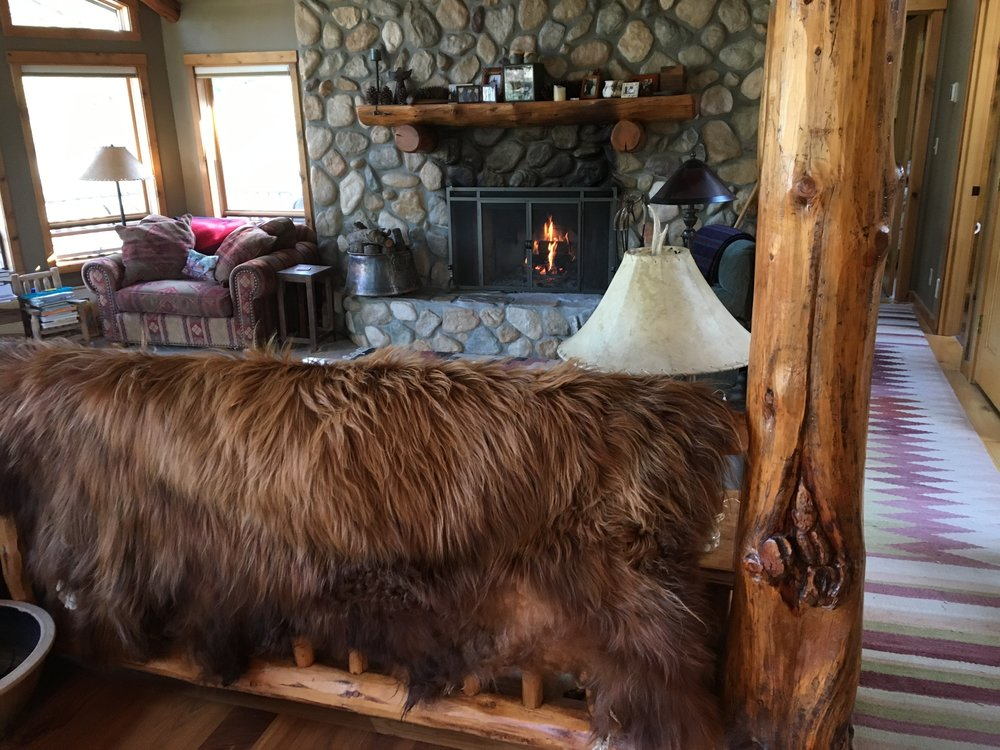 HIGHLAND CATTLE HIDES & HORNS -