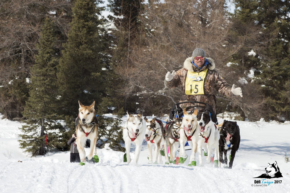 LES mushers -