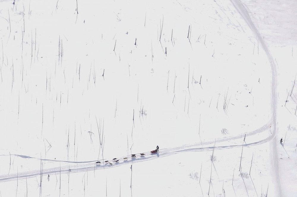 Mushers édition 2015 - Liste des mushers participants à lédition 2015 du Défi Taïga