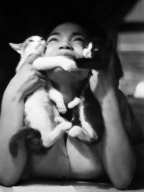 Eartha Kitt, and a couple of kittens, photographed by Gordon Parks. c. 1952