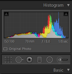 The histogram and metadata for our unedited RAW file is shown here, along with the row of localised adjustment tools that we'll make use of later.