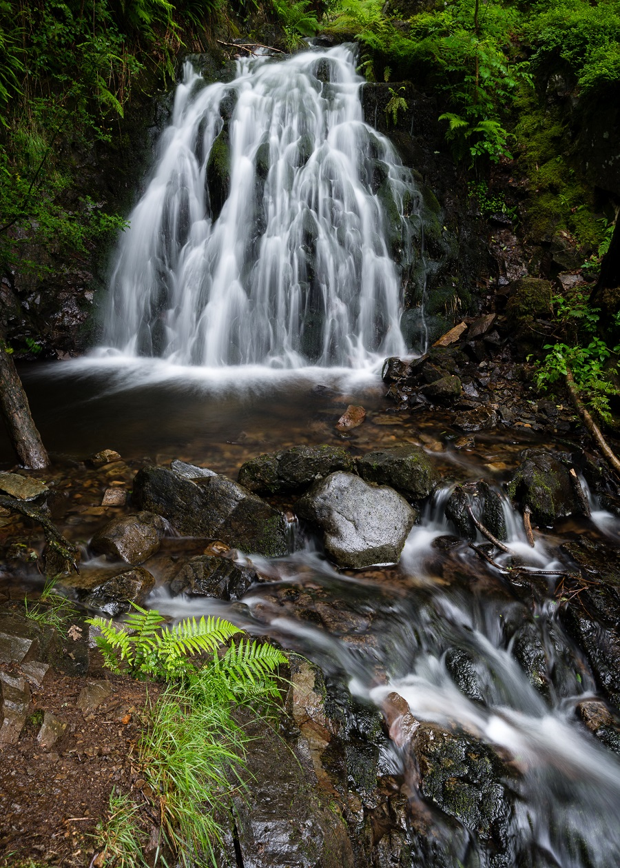 Composition still rules the roost in waterfall photography. Using the tiny fern as a foreground subject and the flowing river as a leading line made this composition much more interesting.