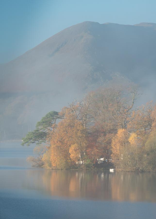 autumnsplendourbefore.jpg