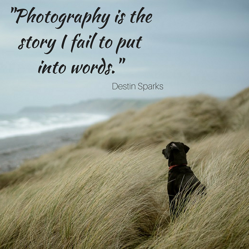 Photography Quotes To Kickstart Your Inspiration Click And Learn Adorable Photography Quotes