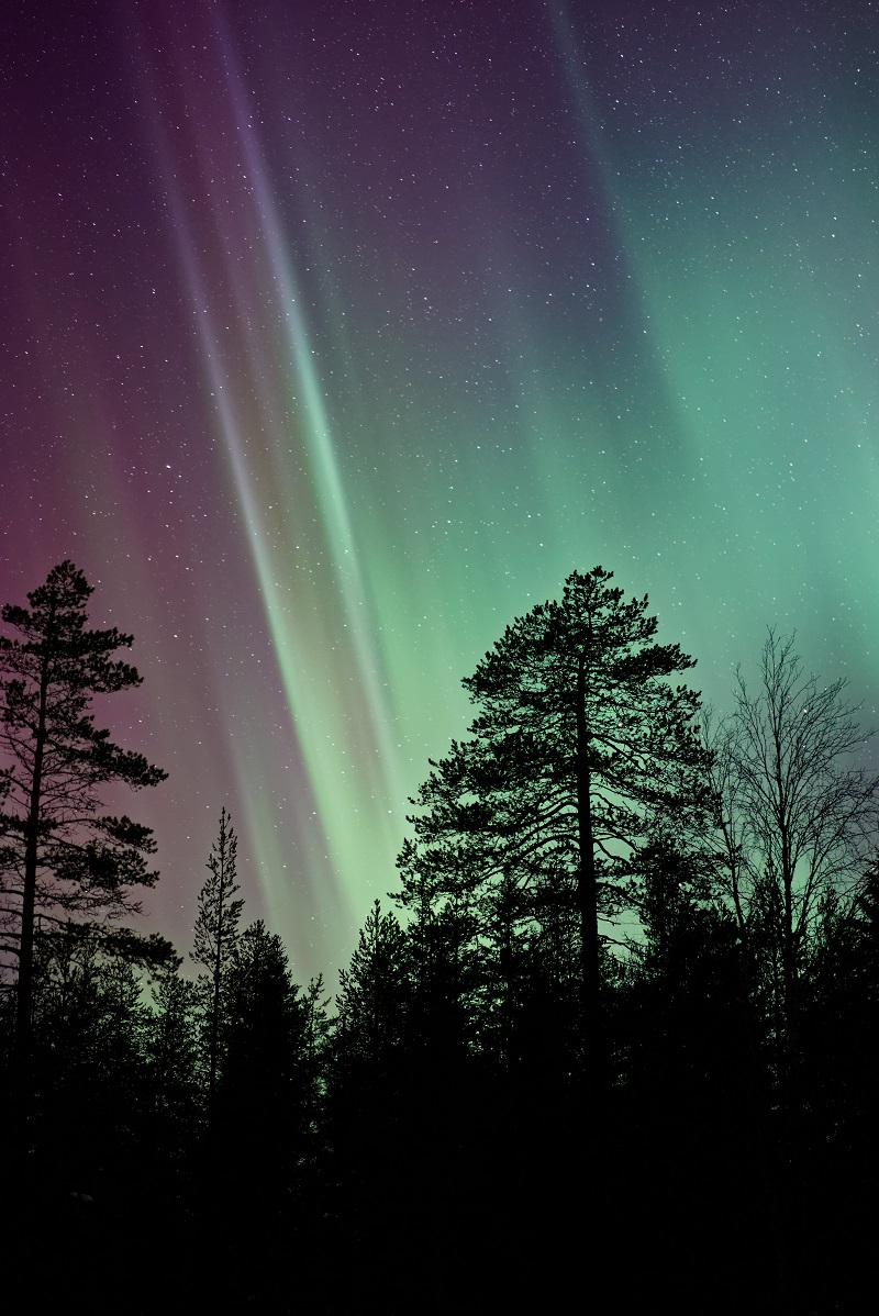 Scandinavia is the perfect location if you want to combine your stargazing with some Aurora Borealis hunting.