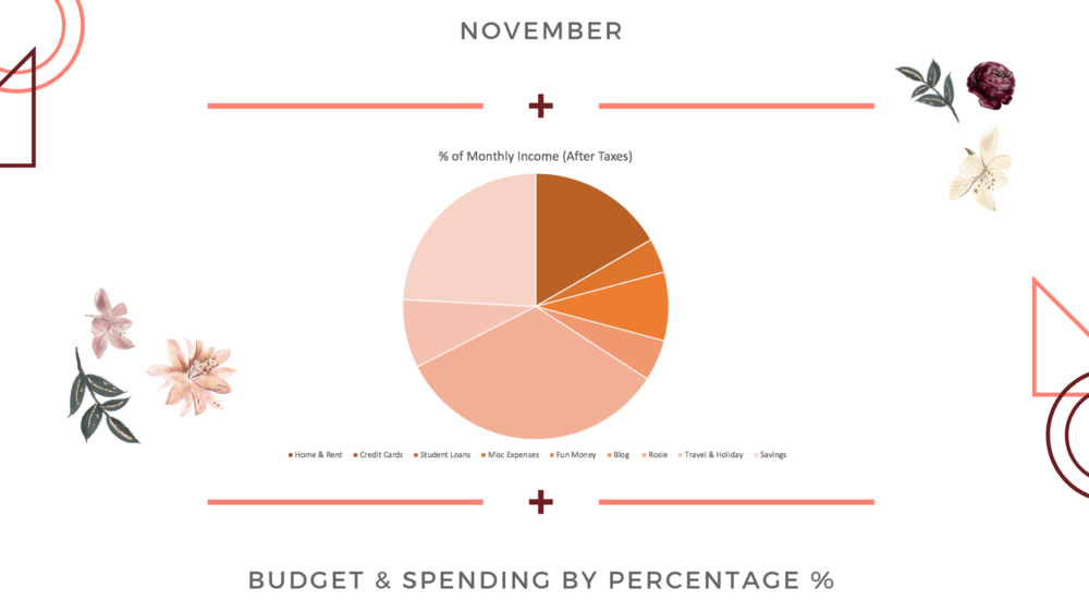 The Wealth Babe November Budget