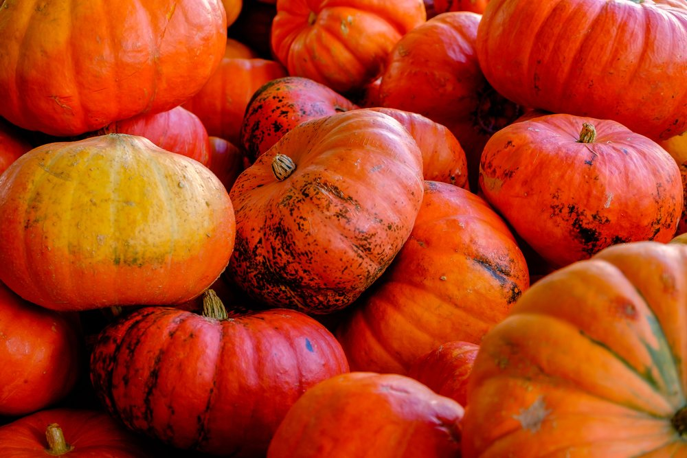 Pumpkin Vitamins! - Pumpkin packs over 200% of your daily Vitamin A!
