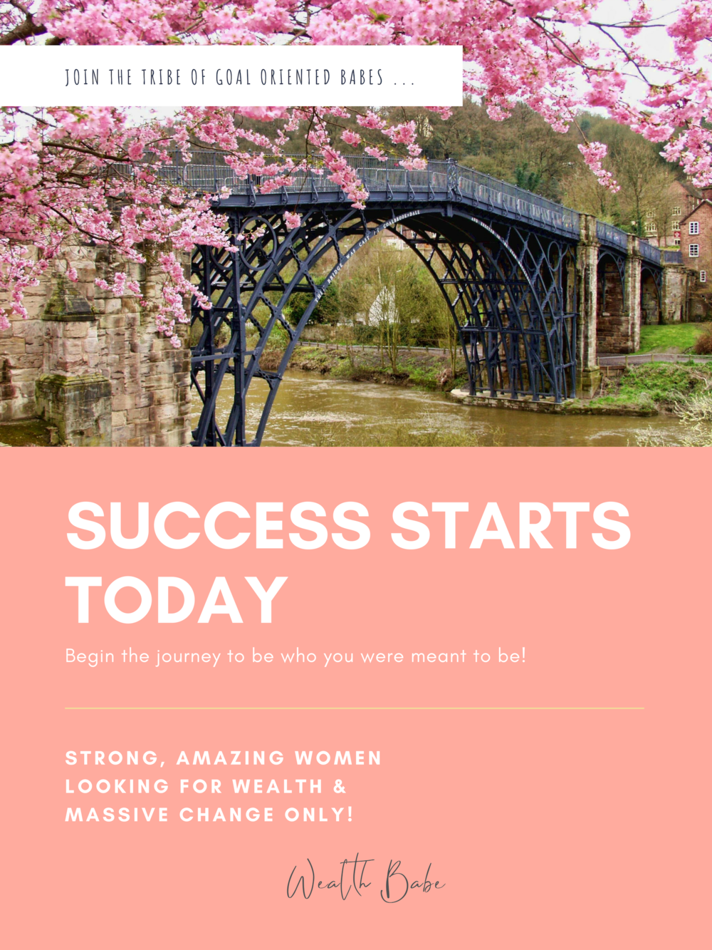 Join Wealth Babe Tribe Personal Finance and Growth Junkies Women.png