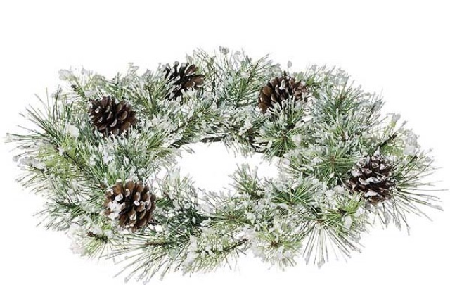 White Wreath Frosted with Pinecones DIY The Wealth Babe budget friendly DIY.jpg