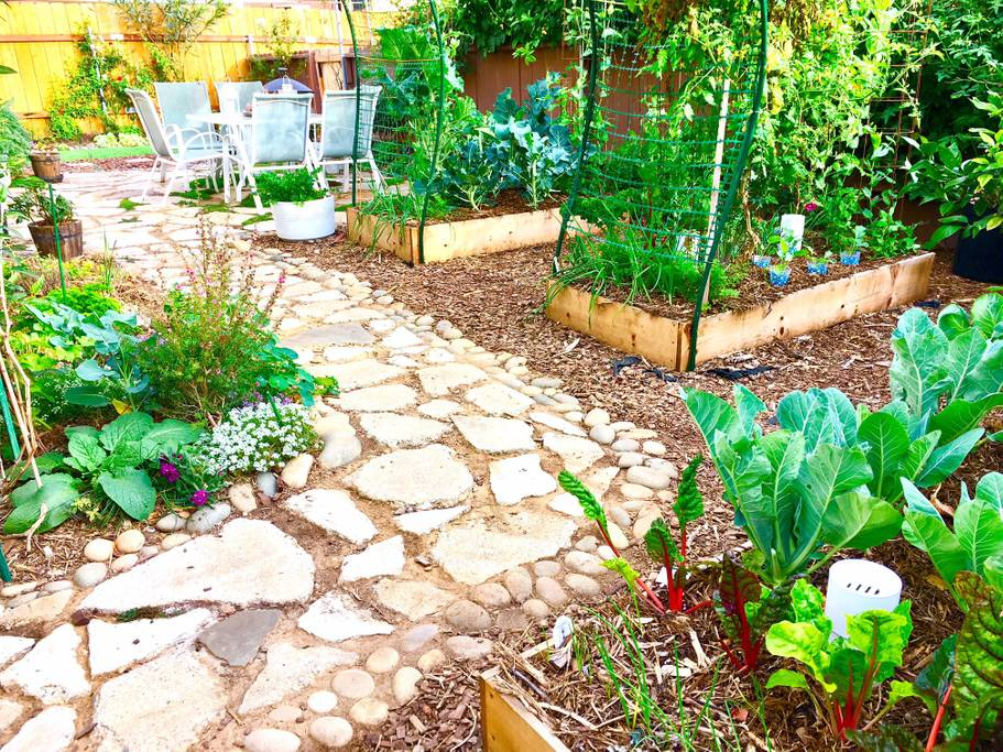 Organic Garden in So Cal Beach Vibes San Diego Vacation Rental in Pacific Beach
