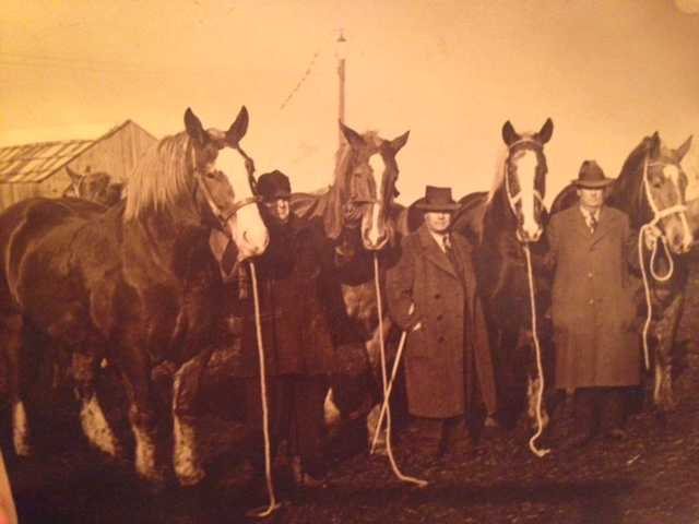 Louis Temkin (center) trading horses