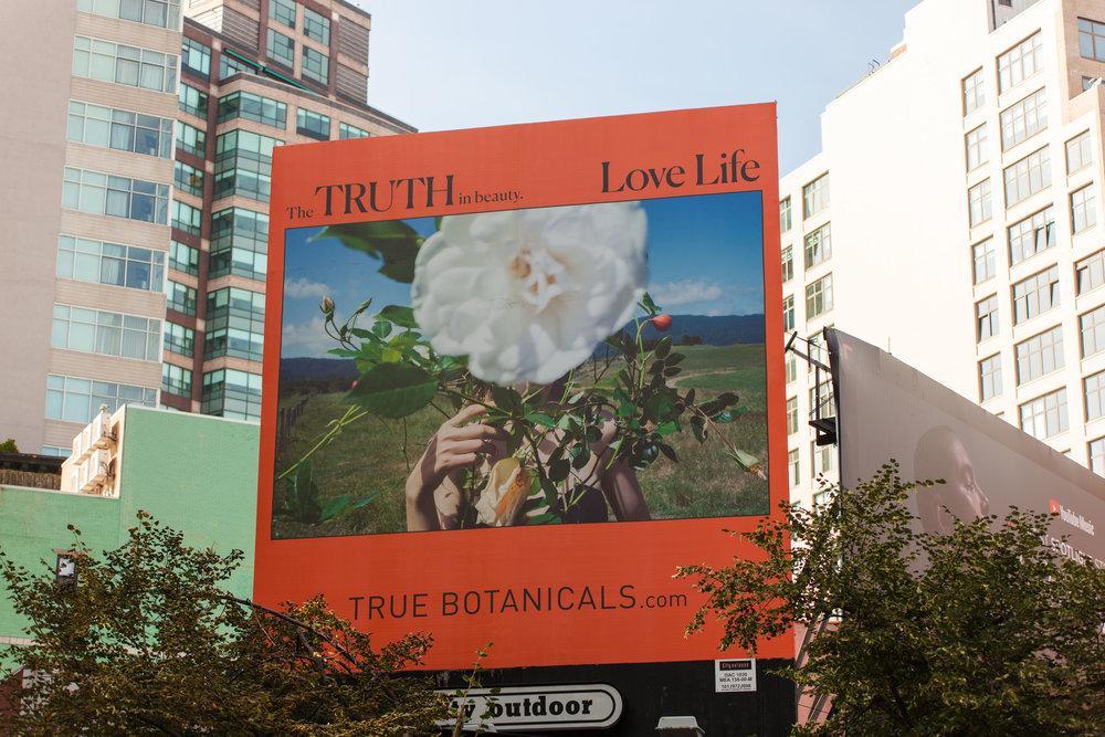 TRUE BOTANICALS (NY).jpg