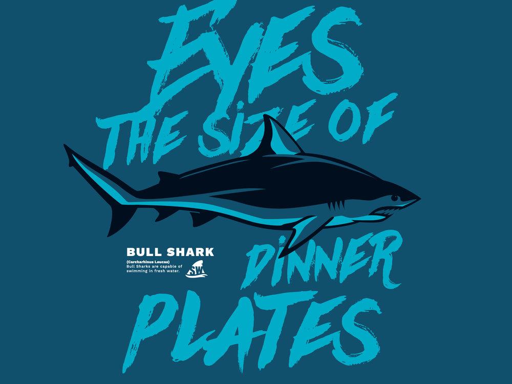 Pilot_Shark_Week16.jpg