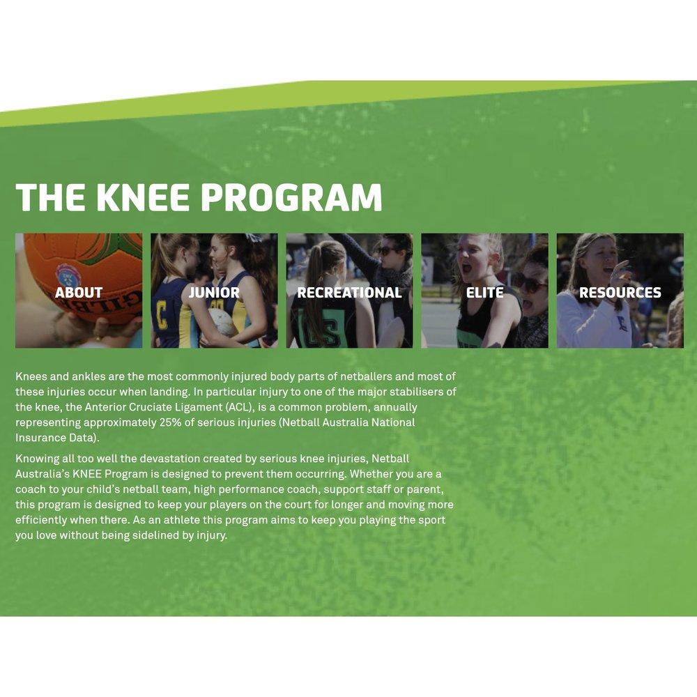 knee.PNG