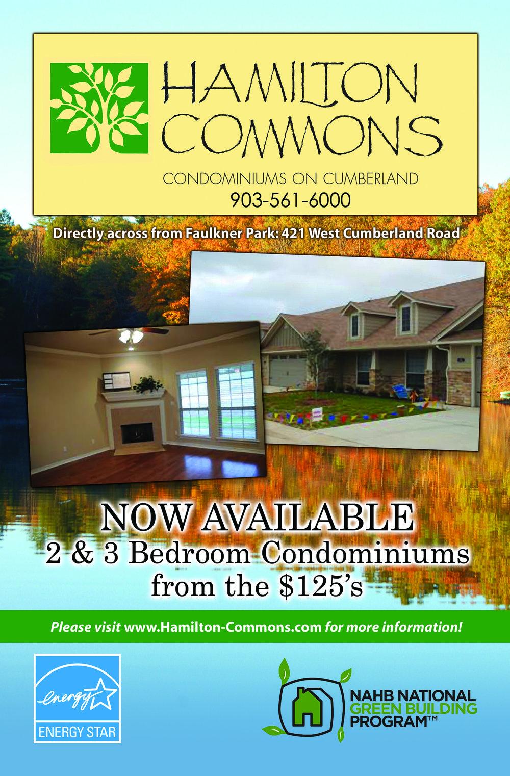 Hamilton Commons 3-09.jpg