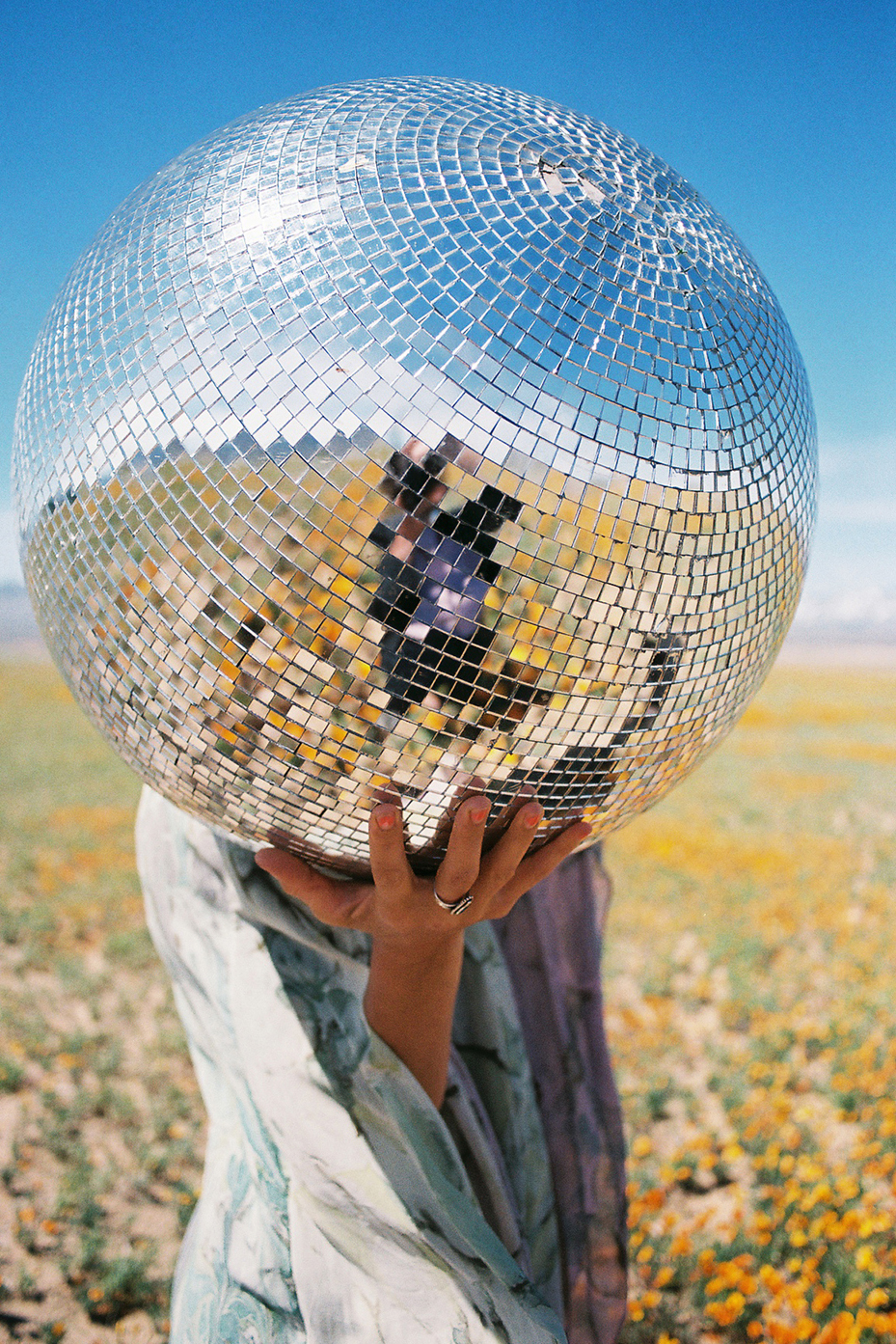 Disco Ball head in poppy fields.jpg