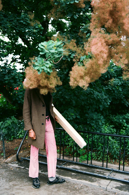 Sisson smoke tree_0031.jpg