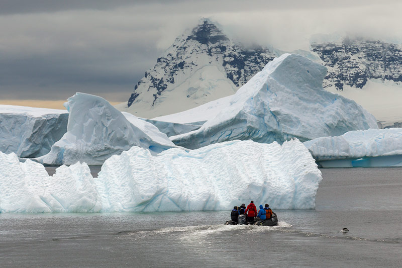 Zodiac Leaving the Rookery. Cuverville Island, Antarctica