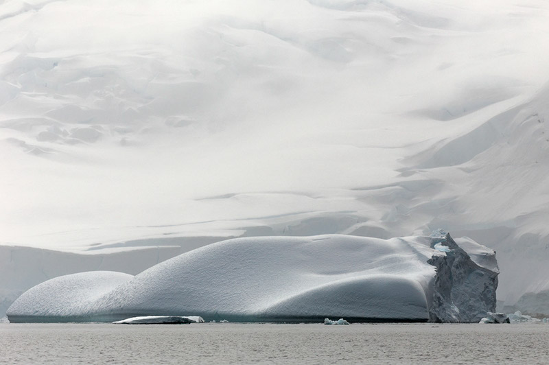 Iceberg at Rest. Dallmann Fjords, Antarctica
