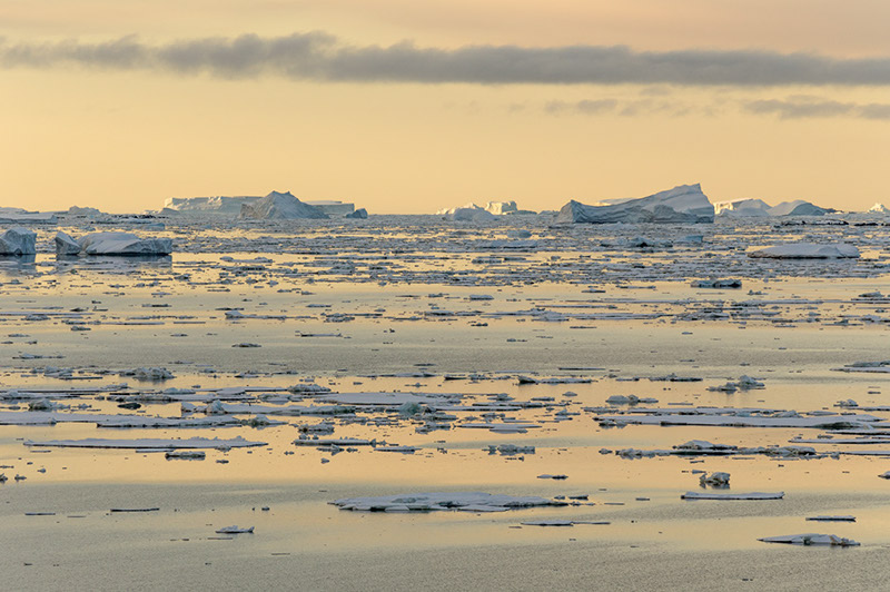 Late Light on Sea Ice near Anvers Island. Antarctica