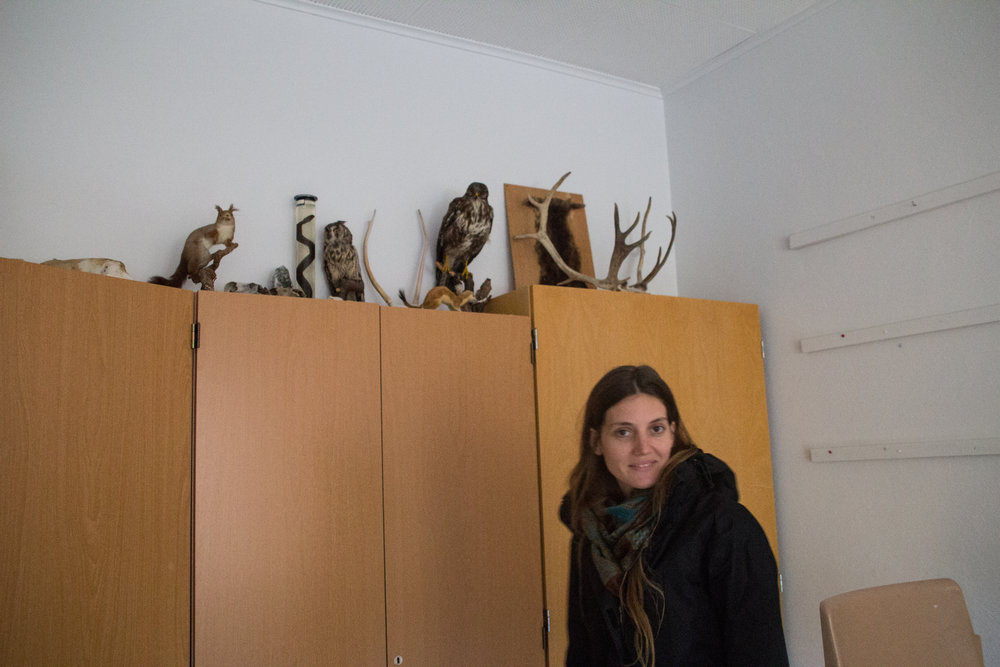 LUZ PEUSCOVICH / ARCTIC 78°N, TROPIC 08°N   Installation Artist born in Buenos Aires, Argentina currently based in Berlin. Studied Visual Arts at the National University de La Plata and has a degree in Curation and Art Management from ESEADE, Buenos Aires.