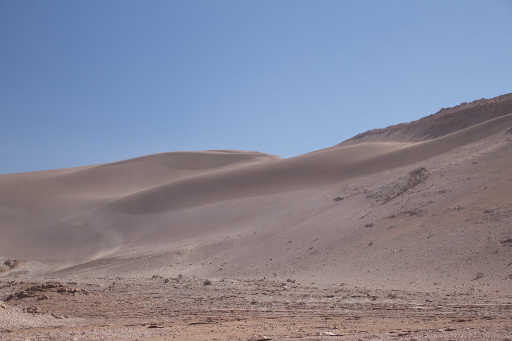 Desert 23°S / Atacama, Chile. Located in parts of the driest desert on earth. In collaboration with ALMA observatory &consejo de pueblos indigenas.