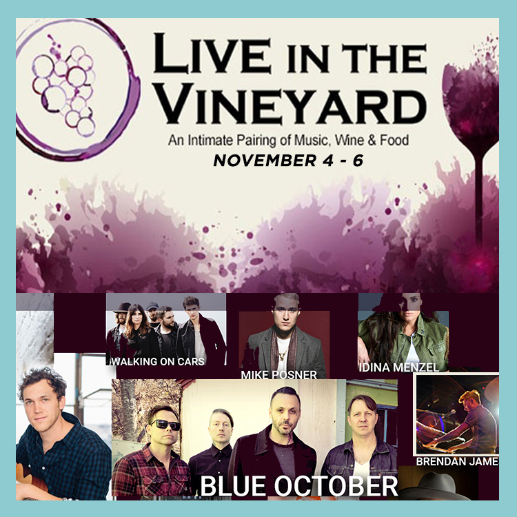 Live in the Vineyard Brendan James