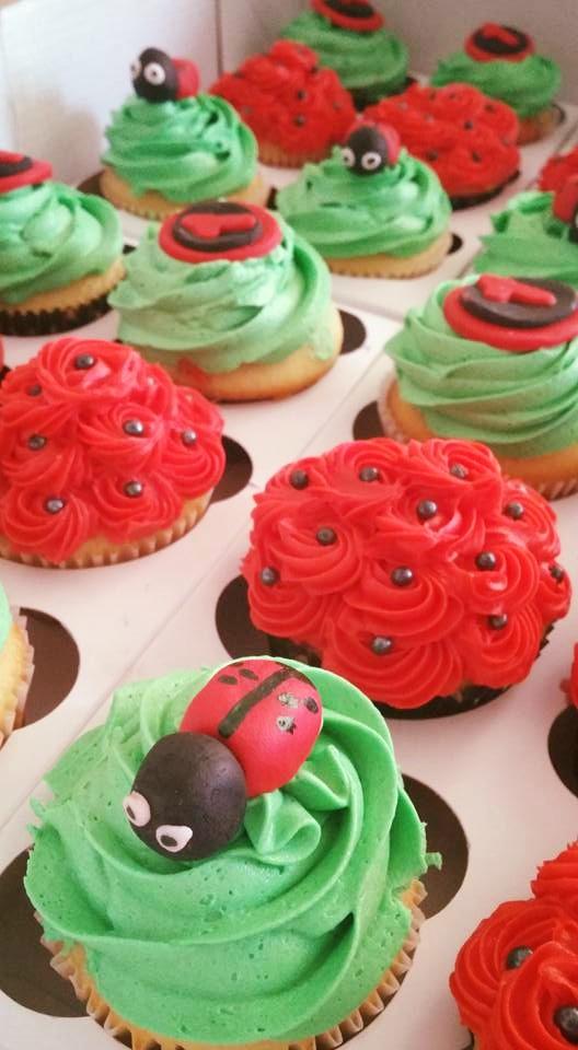 lady bug cupcakes.jpg