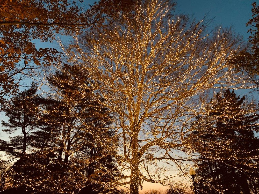 Sunset at Winterlights